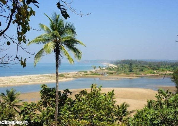 Beaches of Morjim, North Goa