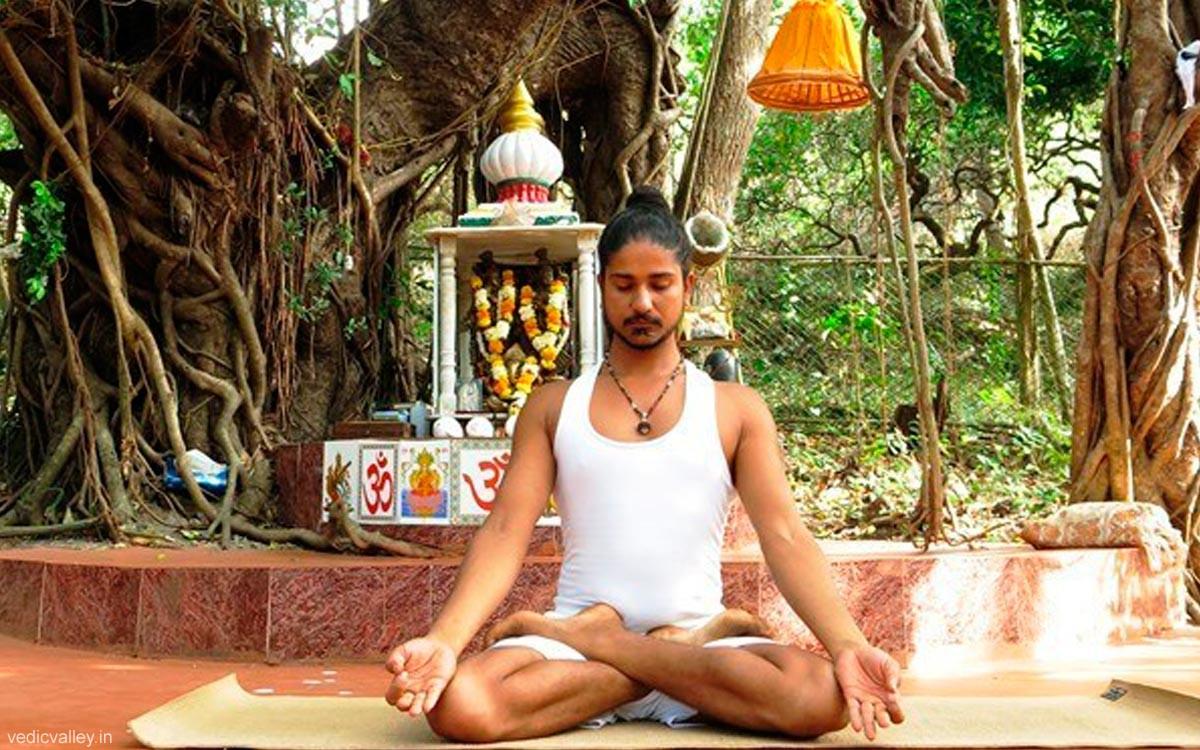 Yogic Life Seminar with Anand Acharya